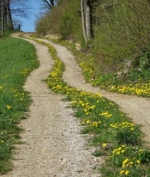 Impressionen vom Römerweg